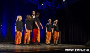 Solothurner Kleinkunsttag 14