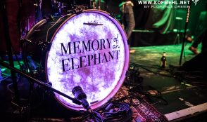 Memory of an Elephant 8