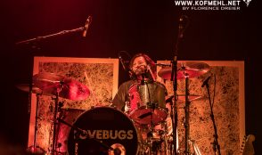 Lovebugs 7
