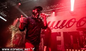 Hollywood Undead 14