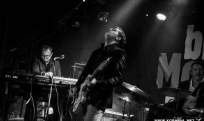 Dominic Schoemaker &Band@Bluemonday 8