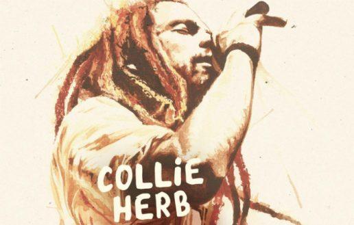 Frisch bestätigt: Collie Herb & The Mighty Roots